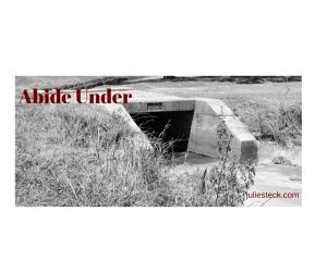 Abide Under