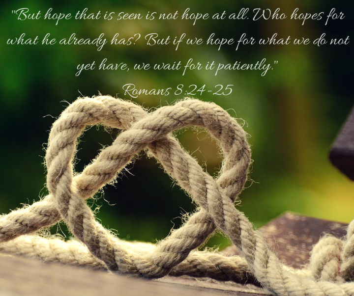 but-hope-that-is-seen-is-not-hope-at-all-who-hopes-for-what-he-already-has-but-if-we-hope-for-what-we-do-not-yet-have-we-wait-for-it-patiently-romans-8-24-25